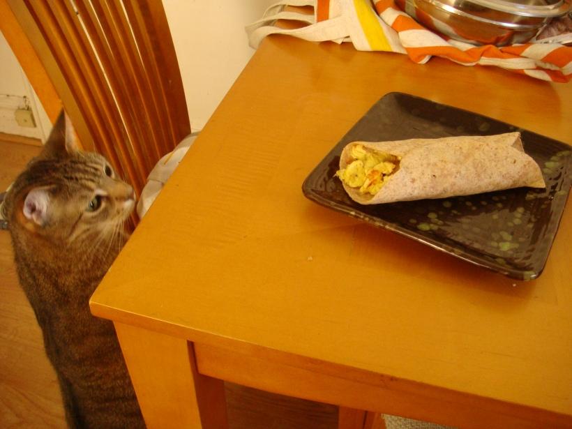 Hutch and burrito