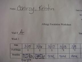 top portion of worksheet