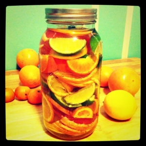 Citrus in jar with vodka