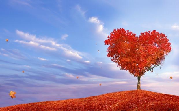fall-heart